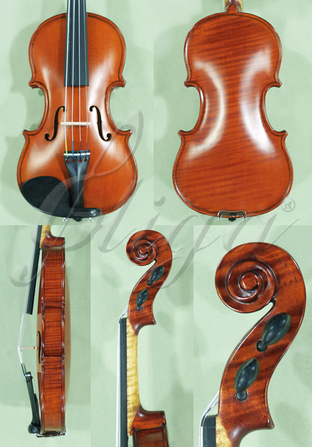1/10 WORKSHOP 'GEMS 1' One Piece Back Violin