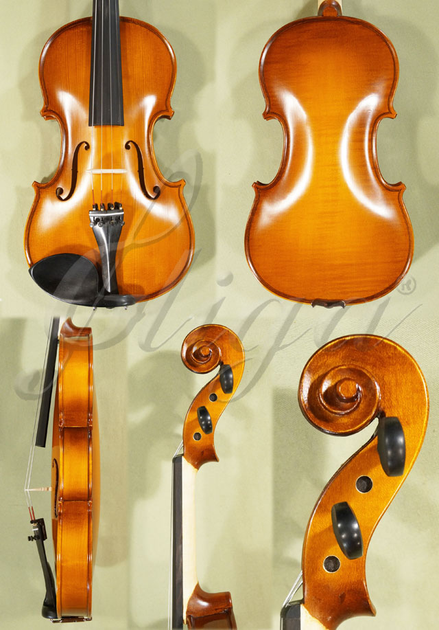 4/4 School 'GENIAL 1-Oil' One Piece Back Violin