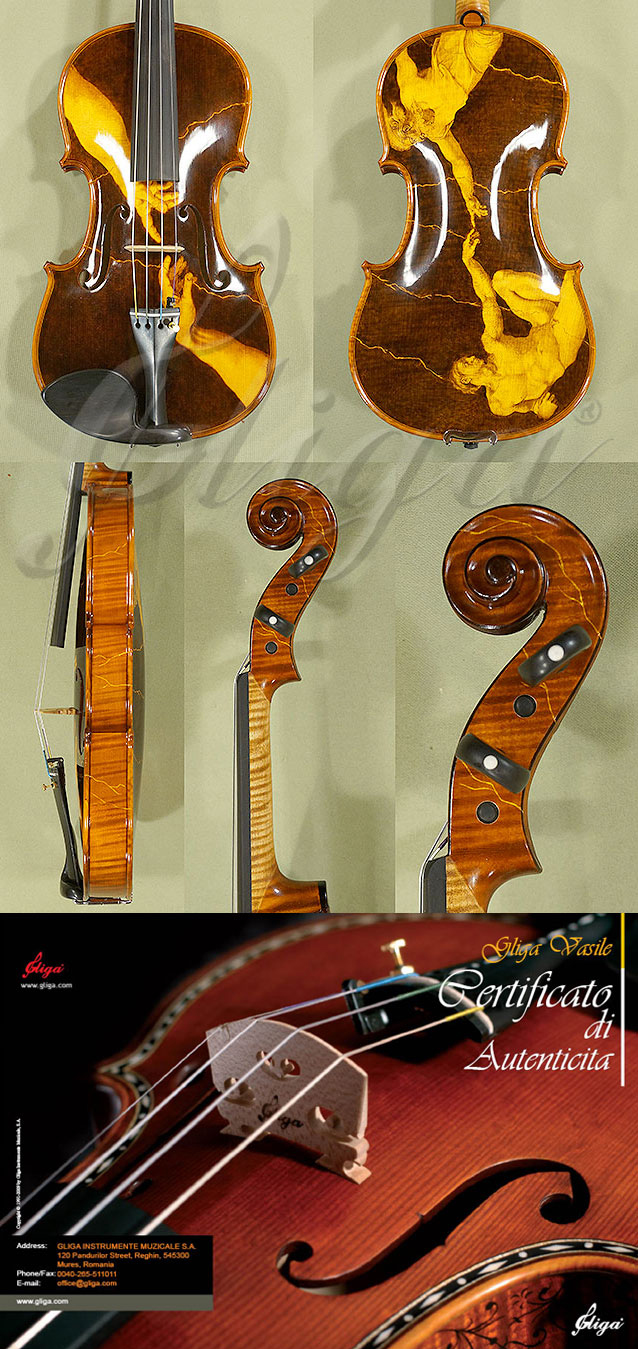 Shiny 4/4 MAESTRO VASILE GLIGA One Piece Back Violin
