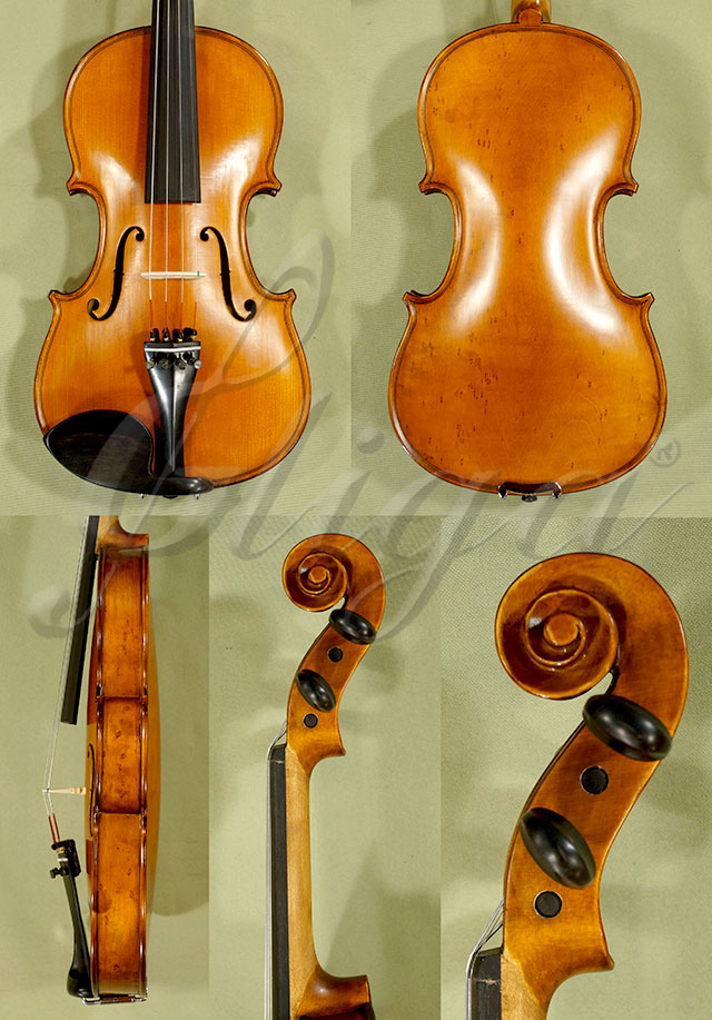 Antiqued 3/4 Student 'GEMS 2' Bird's Eye Maple One Piece Back Violin