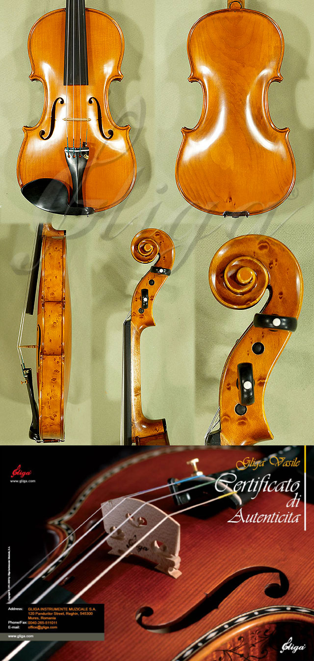 4/4 MAESTRO VASILE GLIGA Willow One Piece Back Violin