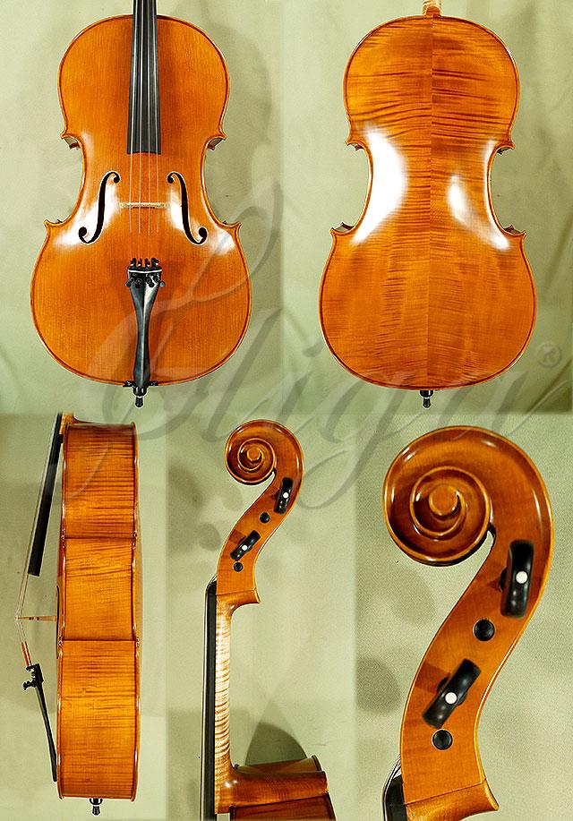 Antiqued 4/4 PROFESSIONAL 'GAMA' Cello