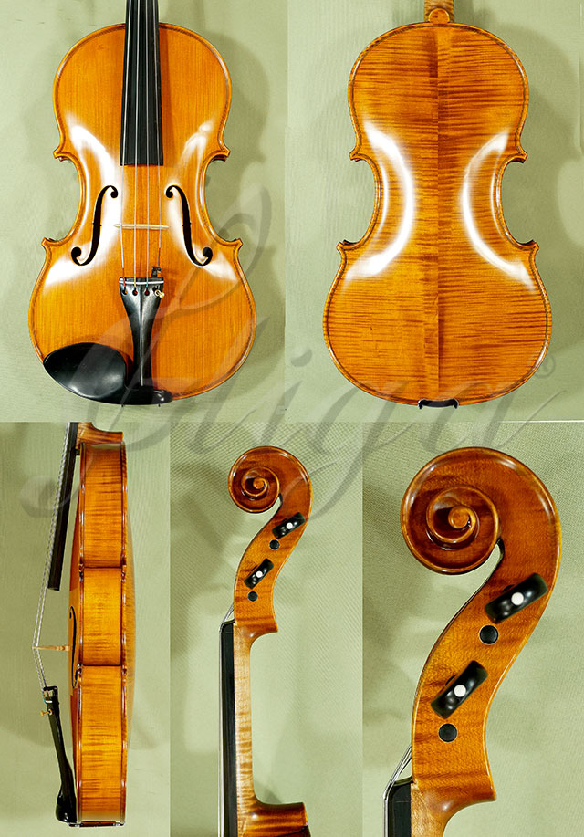 "16.5"" PROFESSIONAL 'GAMA' Viola"