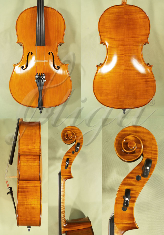 4/4 PROFESSIONAL 'GAMA' Cello 'Italian'