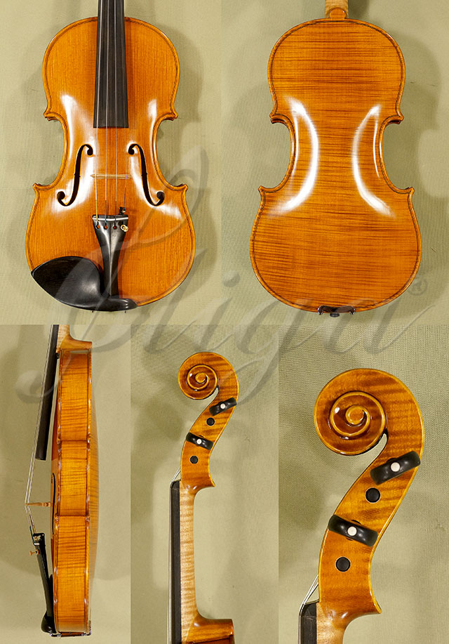 4/4 PROFESSIONAL 'GAMA Super' One Piece Back Violin
