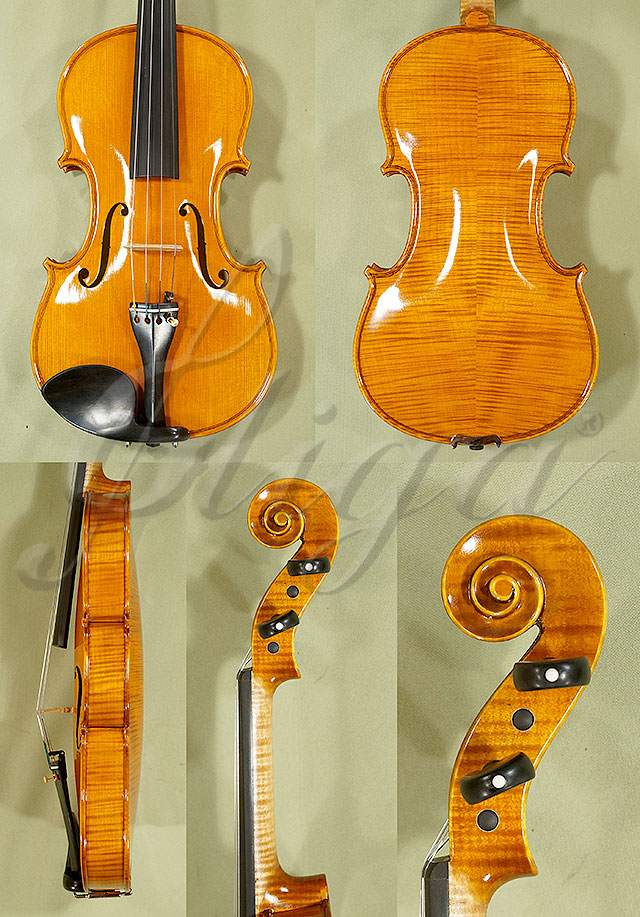 Shiny 4/4 PROFESSIONAL 'GAMA' Violin