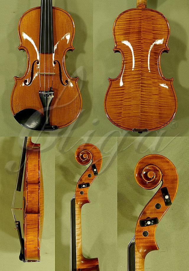 "Shiny 14"" PROFESSIONAL 'GAMA' Viola"