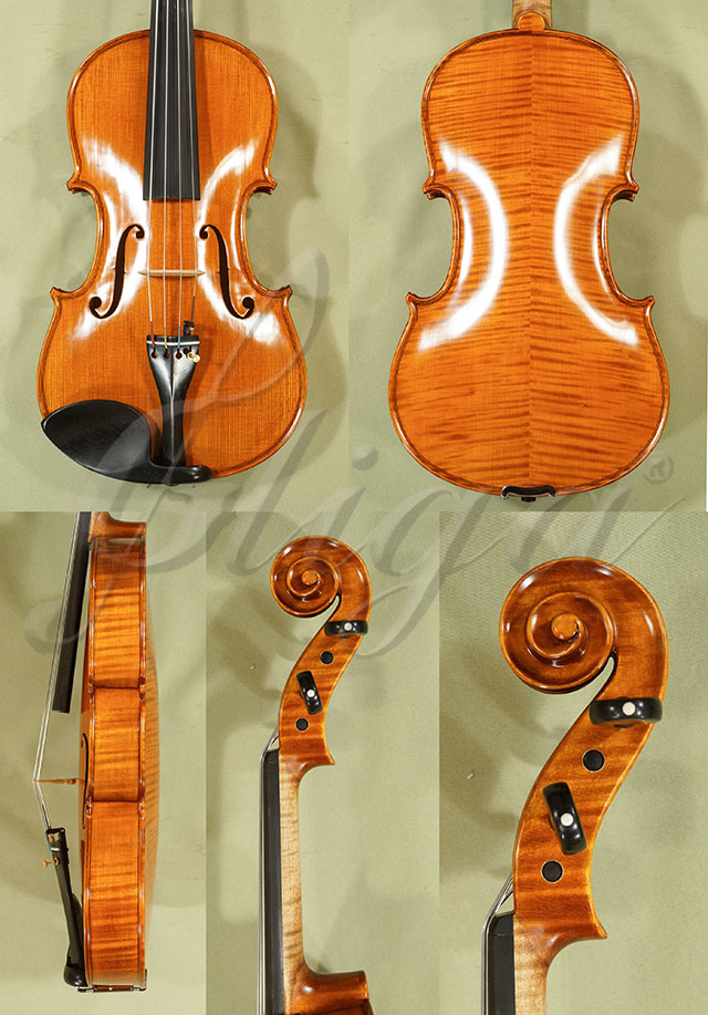 "15"" PROFESSIONAL 'GAMA' Viola"