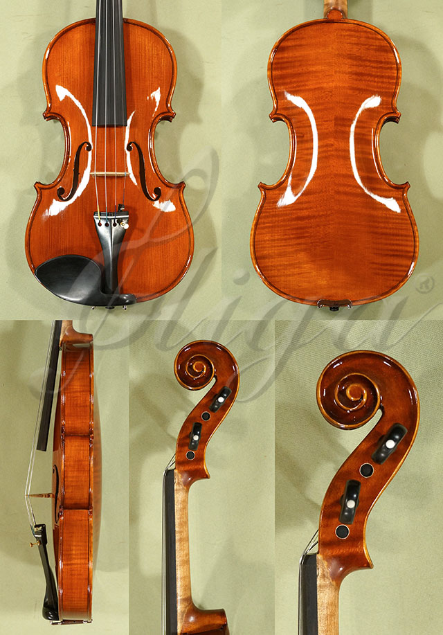 Shiny Antiqued 4/4 PROFESSIONAL 'GAMA' Violin