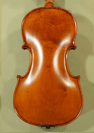 4/4 Student 'GEMS 2' One Piece Back Violin