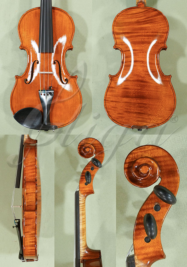 Shiny Antiqued 1/2 WORKSHOP 'GEMS 1' One Piece Back Violin