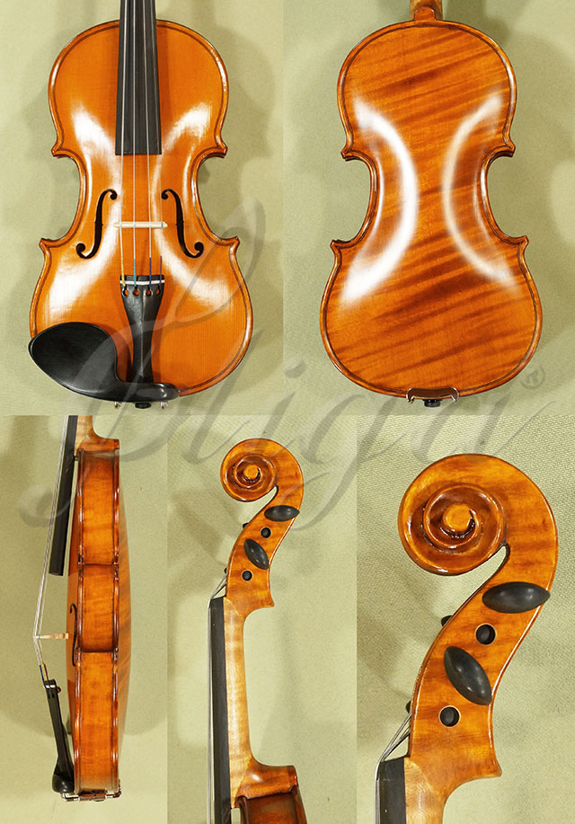 1/10 WORKSHOP 'GEMS 1' One Piece Back Violin