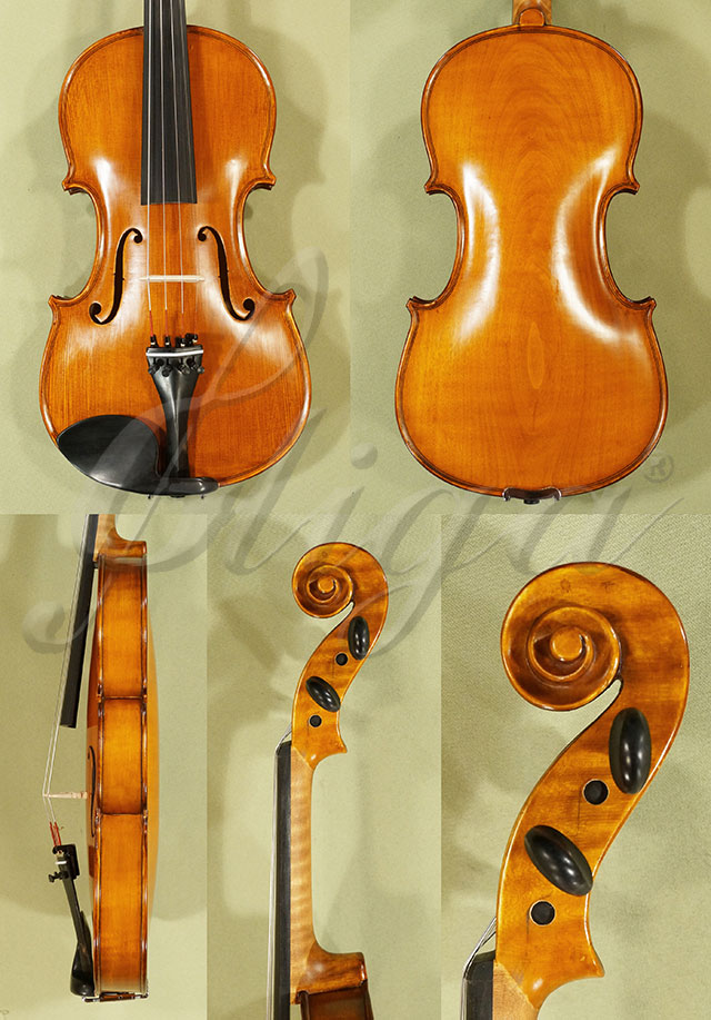4/4 Student 'GEMS 2' Poplar One Piece Back Violin