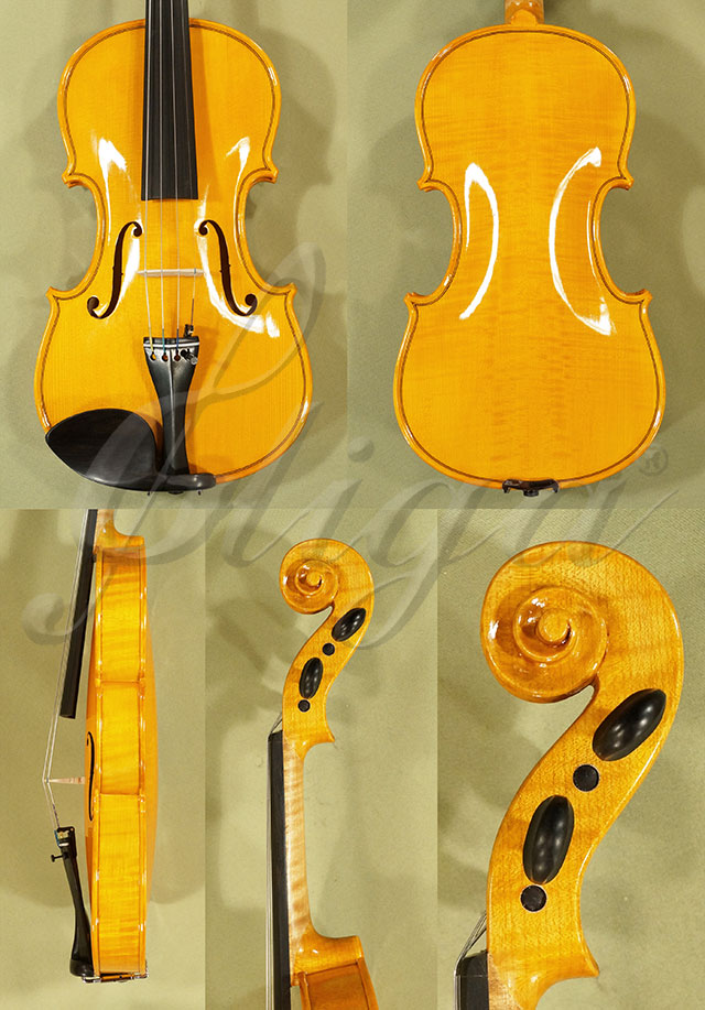 Shiny 4/4 WORKSHOP 'GEMS 1' Violin
