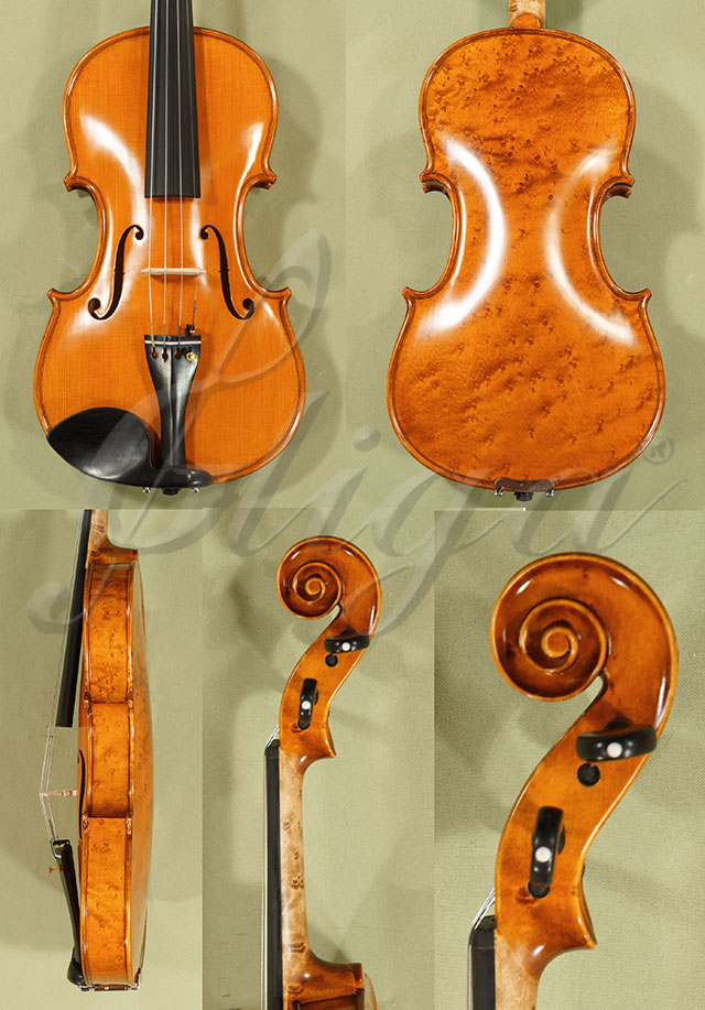 4/4 PROFESSIONAL 'GAMA' Bird's Eye Maple One Piece Back Violin