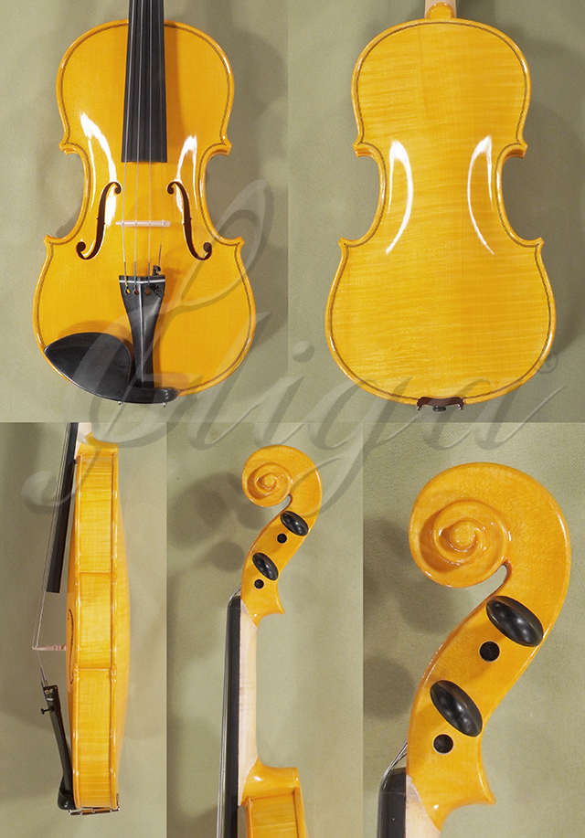 Shiny 4/4 WORKSHOP 'GEMS 1' One Piece Back Violin