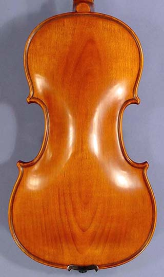 4/4 PROFESSIONAL 'GAMA Super' Willow One Piece Back Violin on sale