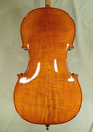 Shiny 4/4 PROFESSIONAL 'GAMA' Cello