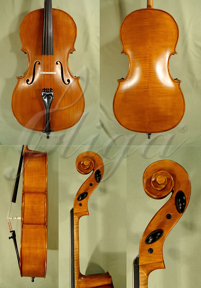 Antiqued 7/8 ADVANCED Student 'GEMS 2' Cello