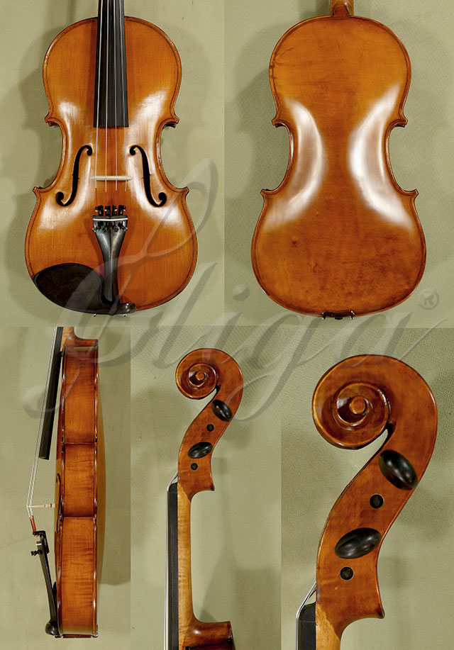 "Antiqued 16"" Student 'GEMS 2' One Piece Back Viola"